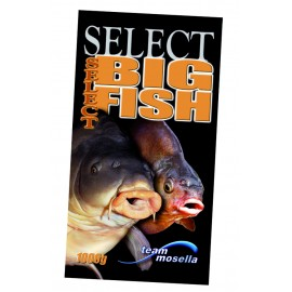 "Big Fish ""Select"""